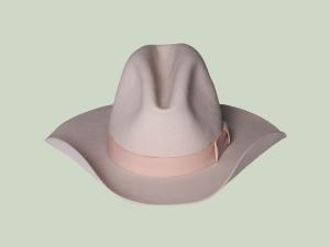 Modern western hat
